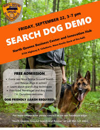 queen s dogs north queens exhibition week u2013 search dog demonstration u2013 north