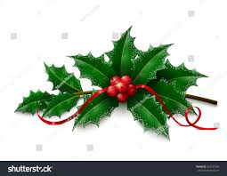 twig christmas holly snowy leaves berries stock vector 333137405