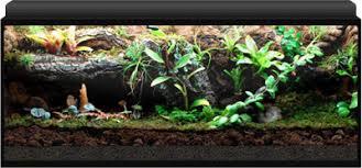 neherp vivarium builder 40 gallon breeder enclosure