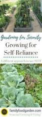 garden layouts for vegetables the self reliance garden