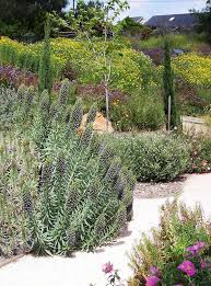 Best 10 Small Backyard Landscaping by Best 25 Tuscan Garden Ideas On Pinterest Dry Garden
