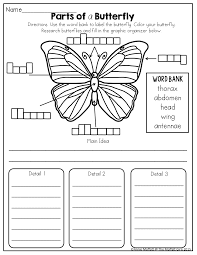 parts of a butterfly tons of fun and effective printables for k 2