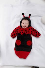 Ladybug Toddler Halloween Costume Halloween Costumes 20 Images