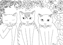 magnificent realistic cat coloring pages with funny cats coloring