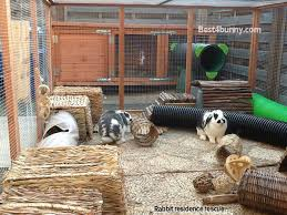 How To Build An Indoor Rabbit Hutch Rabbit Accommodation Housing Ideas For Bunny Rabbits Best 4 Bunny