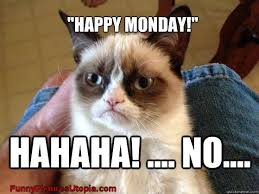 Grumpy Cat Monday Meme - list of synonyms and antonyms of the word happy monday kitty