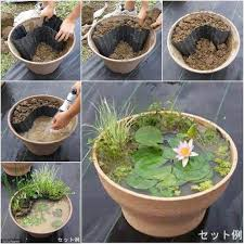 Small Garden Pond Ideas Mini Pond From Tire