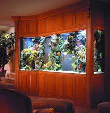 Best Home Aquarium Images On Pinterest Aquarium Ideas - Home aquarium designs