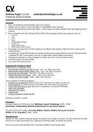 Chronological Sample Resume by Audio Engineer Sample Resume Haadyaooverbayresort Com