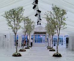 wedding trees palmbrokers event props and plants hire portfolio