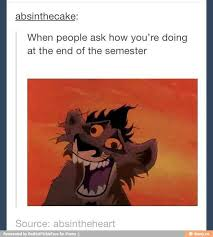 Lion King Cell Phone Meme - best 25 lion king meme ideas on pinterest lion memes funny