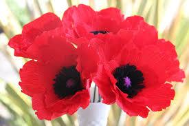 poppy flower meaning u2013 savingourboys info