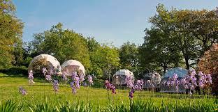 lodging domes for eco retreats u0026 eco resort glamping sites