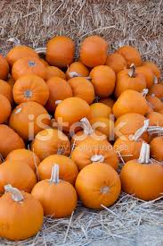 Small Pumpkins Batch Of Small Pumpkins On Hay Stock Photos Freeimages Com