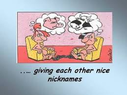 Wedding Quotes Jokes Image Result For Marriage Cartoons Tickled Pink Ain U0027t Luv