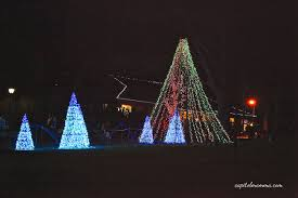 national zoo christmas lights smithsonian s national zoo capitol momma