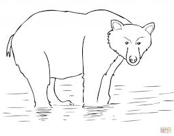 alaska brown bear get coloring page animal creative brown