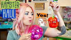 Petsmart Hamster Cages Hamster Supply Haul Petsmart Got New Hamster Supplies Youtube