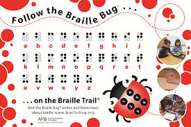 Alphabet Blind Braille Bug Alphabet Poster Single Poster Afb Press Store
