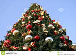 outdoor christmas tree outdoor christmas tree stock photo image of ornaments 7371550