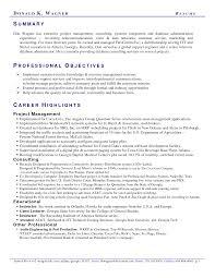 resume executive summary example write resume summary combination style resume sample example of summary on a resume executive summary resume example getessay biz