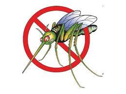 moustique dans ma chambre rhaaaaaaa les moustiques