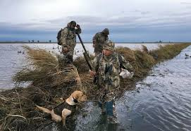 Duck Blind Images Drought Squeezes Duck Hunters U2013 That Could Be Bad News For Fowl