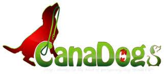 affenpinscher breeders canada dog breeders in canada canadogs