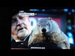 groundhog 2016 punxsutawney phil prediction