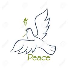 white dove of peace flying with green olive branch in beak