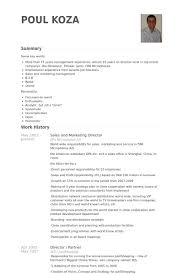 resume for sales and marketing sales and marketing director resume samples visualcv resume