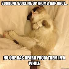 Funny Sleep Memes - someone woke me up from a nap once no one has heard from