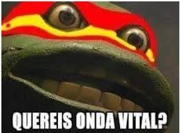 Ninja Turtle Meme - ninja turtle meme 28 images ninja turtle memes image memes at