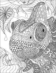 free printable zentangle coloring pages free zentangle coloring pages dikma info dikma info