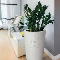 vasi da interno vasi da giardino ed interno vendita bestprato