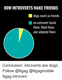 Introvert Meme - how introverts make friends dogs count as friends an extrovert found