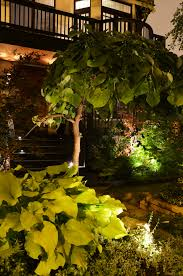 outdoor landscaping lights landscape lighting enhance your outdoor environment georgia