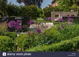 modern contemporary walled garden design stock photo royalty free