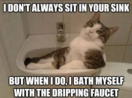 Plumbing Meme - 58 best plumbers images on pinterest plumbing humor attic