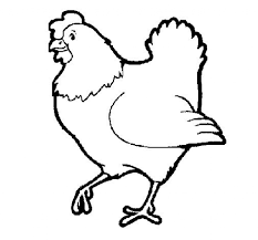 little red hen coloring page letter h pinterest little red in