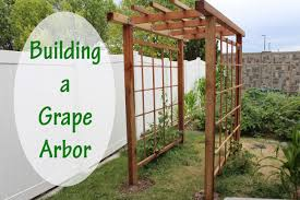 awesome picture of how to build a grape arbor pergola perfect