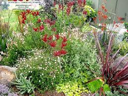how to landscape with succulents succulent gardens