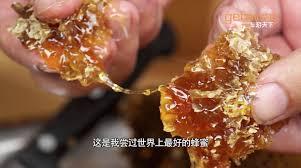 Seeking Honey Seeking Honey In Tibet Himalaya