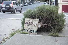 less sad methods of christmas tree disposal