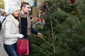 best christmas tree stores in new york for holiday decorations
