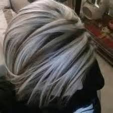 white hair with black lowlights best 25 white hair highlights ideas on pinterest white