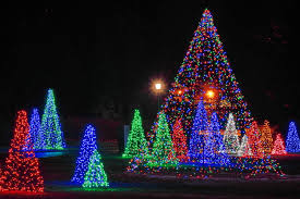 Twinkling Christmas Tree Lights Canada by Christmas Lights In Trees Christmas Lights Decoration