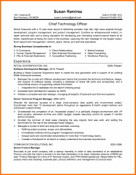 Resume It Template 8 Resume Template It Budget Reporting