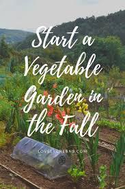 tips for starting a new vegetable garden garden living and