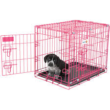 Kennel Floor Plans by Aspen Pet Wire Home Training Dog Kennel 34